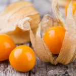 Physalis-fruit
