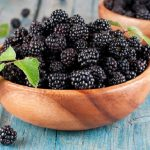 10 Health Benefits and Uses of Boysenberry
